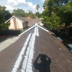 Waterproofing and Painting of Tile Roof